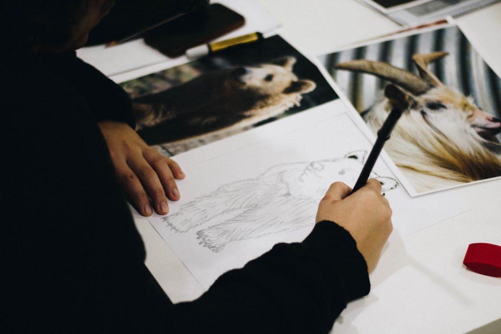 Practise Drawing